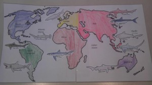 Sharks Around the World Mapping Project