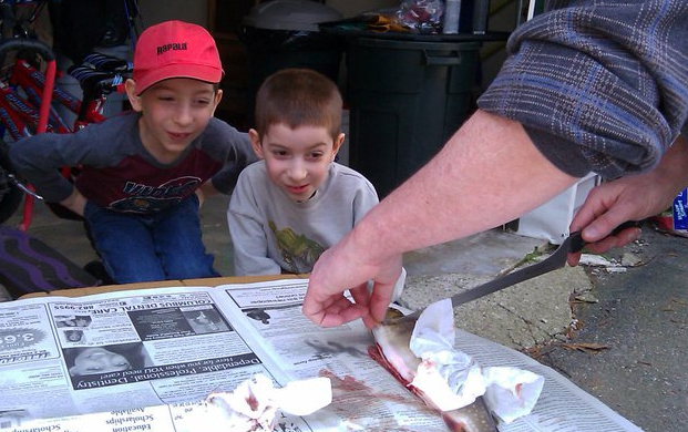 homeschool rabbit trails with fish