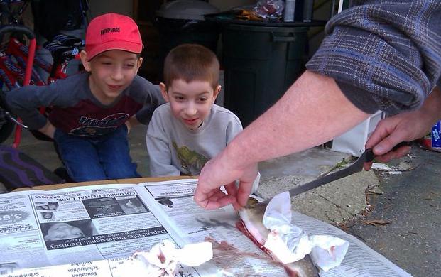 homeschool rabbit trails with fish