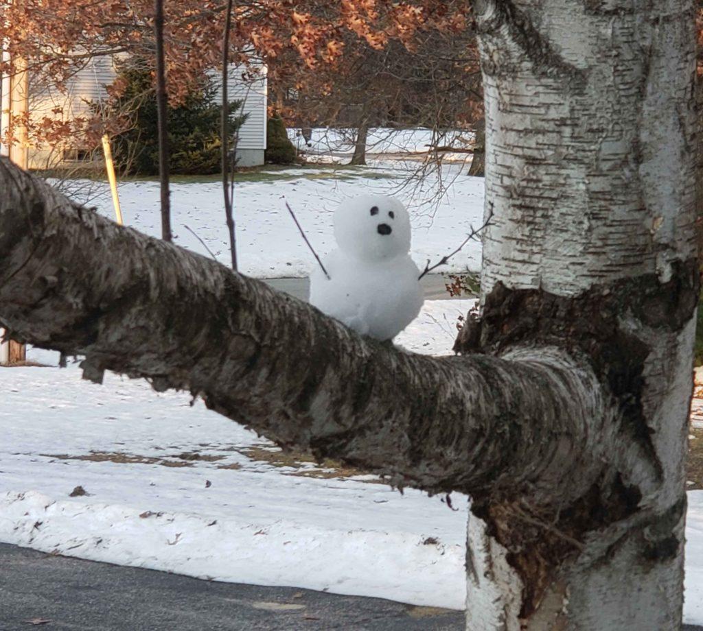 snowman in tree